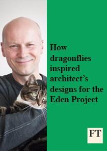 How dragonflies inspired architect's